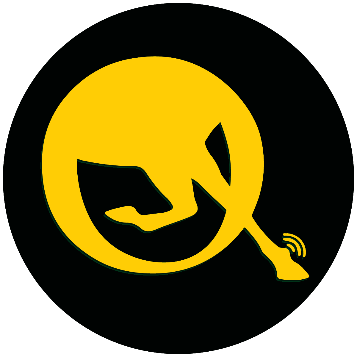 q logo for social media b.png